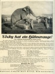 "Jahrmarktstil ohne Ende: Selbst der Zirkuselephant ""kukirolt"" (1926)"